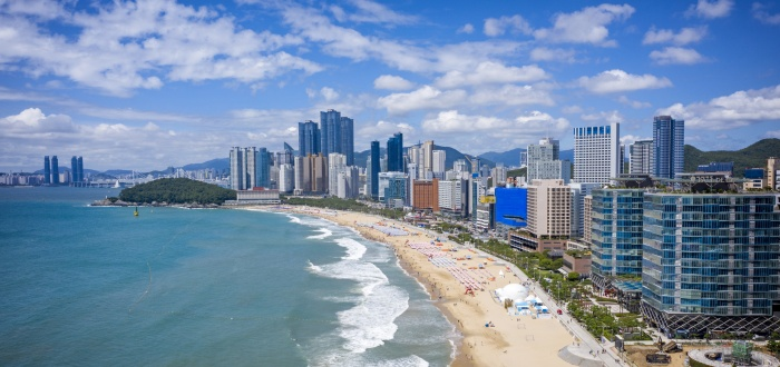 What to Do When COVID-19 Ends? Celebrate with a Trip to Busan! | Focus