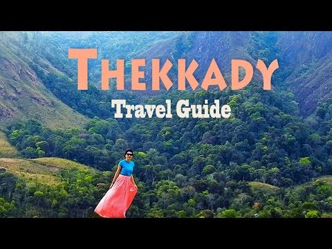 Thekkady Travel Guide | Periyar Tiger Reserve Activities in Kerala